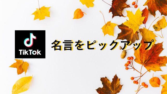 TikTok名言ピックアップ